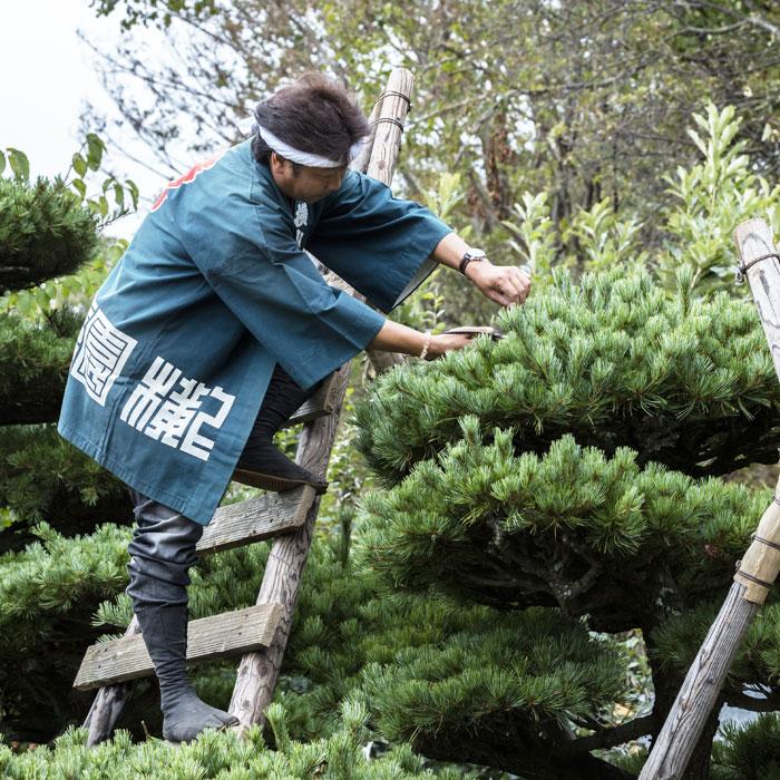 横山造園の経営理念について